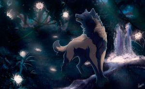 Song of moonlight sonata + video by Anerris