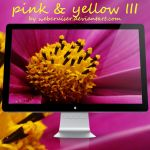 pink and yellow III by webcruiser