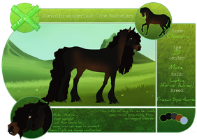 CW | Obscura | The Bachelor Herd | Captive by pony-bones