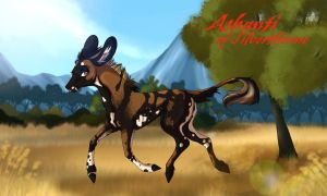 Ashanti | Hind | Silverthorne Outcast by Wistfully-Dreaming