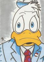 Howard the Duck by Elvatron