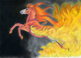 The Fire Of A Fierce Heart by PolarisAstrum