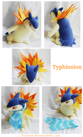 Custom Typhlosion by Fox7XD