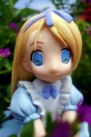 Pop Wonderland ALICE by spade13th