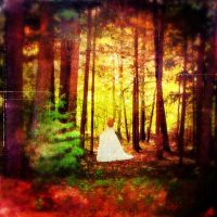 The Lady In the Woods by Vickielini