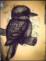 kookaburra by dustingire