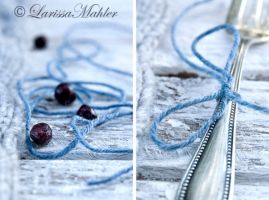 Bilberries by Lily-of-the-Vallley