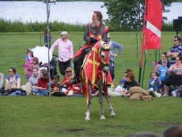 Jousting - Knight 96 by Axy-stock