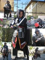 Ezio Collage by SapphireEagle