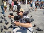 Plaza di San Marcos birds by momentstoremind