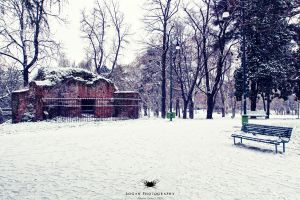 First snow in Milan 2009 by LoganX78