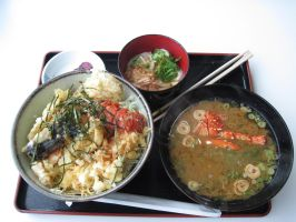 japanese lunch set by rayna23