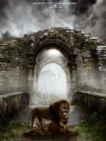 Lions by artaquilus