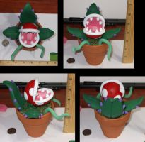 Parana Plant in a Pot by Sin-R