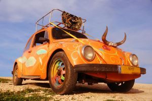 The Love Bug by ahermin