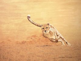 Serengeti Express by donaldsart