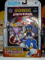 Sonic and Blaze Figure Set by DarkGamer2011