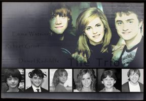 The Harry Potter Trio by Nadine2390