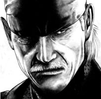 Old Snake by Flxrence