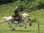 Border Reiver 28 by Axy-stock