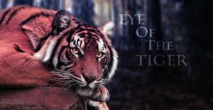 Eye Of The Tiger by JessicaOssa