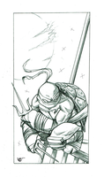 Raphael - pencils by giulal