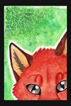 Red fox by InsaneDeath