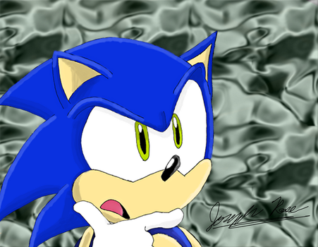 Sonic Is Puzzled by Pyrose17