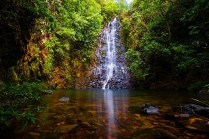 Butterfly Falls by LifeCapturedPhoto