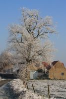 Ice landscape Diksmuide 16 by carinaD-stock