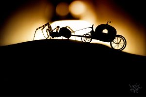Midnight Carriage by lukas-marcel