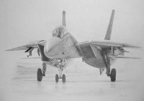 F14 Tomcat by Boss429