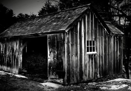 Shed by unclelouie9841