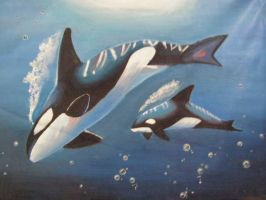 Orca: Painting by magmanorn