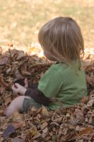 autumn leaves by sunshinegypsy