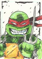 TMNT Raph Sketch Card by Graymalkin2112