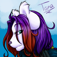 Head Profile - Tanaquil-winter by Feathers-n-Fluff