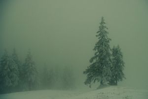 winter storm by horhhe