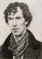 Sherlock, Portrait by Nippip