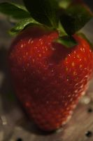 Strawberry Stock 7 by terrestri-stockz