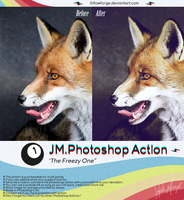 JM.Photoshop Action No.1 - The Freezy One by legalcrime