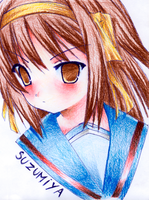 SUZUMIYA by bullborgnine