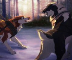 Confrontation by Tazihound