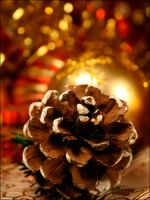 Pine cone christmas by MarieMagenta