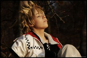 Roxas kh2 sunset:new by Tenraii