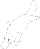 Free to Use Platypus Lineart by Whitelupine