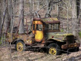 Power Wagon in the Woods by TheMightyQuinn
