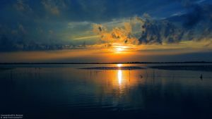 Sunset in Danube Delta by RichardConstantinoff