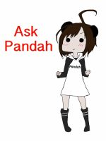 Ask Pandah now open by NerdFunction