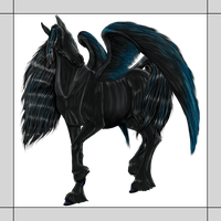 Black Beauty with Wings by gomas-sketches